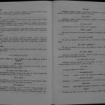 Ovidiu Leonte - Porumbeii galateni (102)