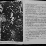 Ovidiu Leonte - Porumbeii galateni (11)