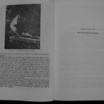 Ovidiu Leonte - Porumbeii galateni (66)