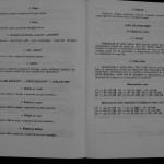 Ovidiu Leonte - Porumbeii galateni (99)