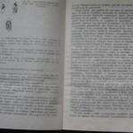bolile porumbeilor (100)