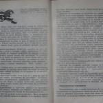 bolile porumbeilor (131)