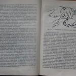 bolile porumbeilor (136)