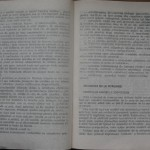 bolile porumbeilor (144)