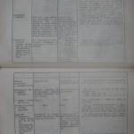 bolile porumbeilor (152)