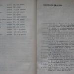 bolile porumbeilor (164)