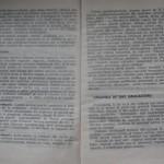 bolile porumbeilor (28)
