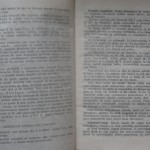 bolile porumbeilor (8)