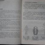 bolile porumbeilor (81)