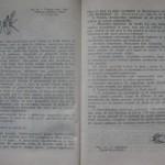 bolile porumbeilor (84)