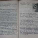 bolile porumbeilor (85)
