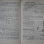 bolile porumbeilor (92)