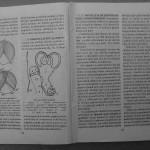 Farmecul columbofiliei - Feliciu Bonatiu (17)