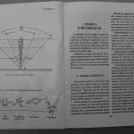 Farmecul columbofiliei - Feliciu Bonatiu (22)