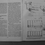 Farmecul columbofiliei - Feliciu Bonatiu (30)