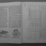 Farmecul columbofiliei - Feliciu Bonatiu (42)