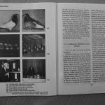 Farmecul columbofiliei - Feliciu Bonatiu (99)