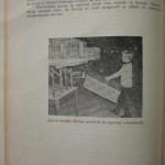 Georgica Popescu - Sportul columbofil romanesc (231)