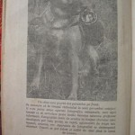 Georgica Popescu - Sportul columbofil romanesc (92)