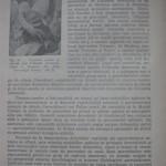 Peterfi Stefan - Cresterea porumbeilor (14)