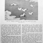 Peterfi Stefan - Cresterea porumbeilor (157)