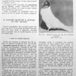 Peterfi Stefan - Cresterea porumbeilor (169)