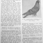 Peterfi Stefan - Cresterea porumbeilor (181)