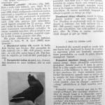 Peterfi Stefan - Cresterea porumbeilor (208)