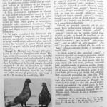 Peterfi Stefan - Cresterea porumbeilor (210)