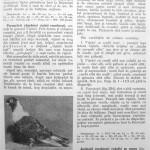 Peterfi Stefan - Cresterea porumbeilor (217)