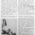 Peterfi Stefan - Cresterea porumbeilor (222)