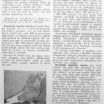 Peterfi Stefan - Cresterea porumbeilor (234)
