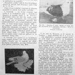 Peterfi Stefan - Cresterea porumbeilor (239)