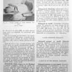 Peterfi Stefan - Cresterea porumbeilor (86)