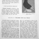 Peterfi Stefan - Cresterea porumbeilor (89)