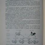 Rasele de porumbei din Romania - Feliciu Bonatiu (106)