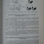 Rasele de porumbei din Romania - Feliciu Bonatiu (107)