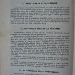 Rasele de porumbei din Romania - Feliciu Bonatiu (136)
