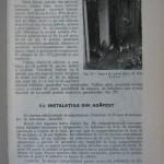 Rasele de porumbei din Romania - Feliciu Bonatiu (149)
