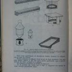 Rasele de porumbei din Romania - Feliciu Bonatiu (152)