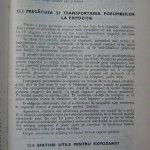 Rasele de porumbei din Romania - Feliciu Bonatiu (185)