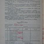 Rasele de porumbei din Romania - Feliciu Bonatiu (186)