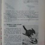 Rasele de porumbei din Romania - Feliciu Bonatiu (187)