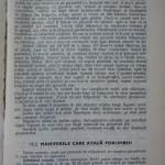 Rasele de porumbei din Romania - Feliciu Bonatiu (189)
