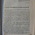 Rasele de porumbei din Romania - Feliciu Bonatiu (2)