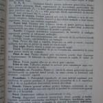 Rasele de porumbei din Romania - Feliciu Bonatiu (209)