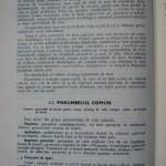 Rasele de porumbei din Romania - Feliciu Bonatiu (42)