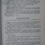 Rasele de porumbei din Romania - Feliciu Bonatiu (47)