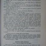 Rasele de porumbei din Romania - Feliciu Bonatiu (51)