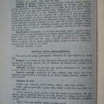 Rasele de porumbei din Romania - Feliciu Bonatiu (54)